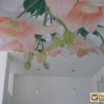 Печать на натяжных потолках: как и чем наносятся изображения
