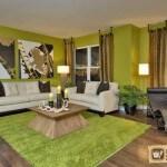 Зеленый дизайн интерьера: каким он может быть в каждой из комнат?