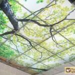 Подвесные стеклянные потолки: их виды, преимущества