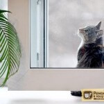 Вентиляция квартиры с пластиковыми окнами: как её осуществить?