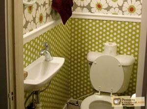 1400147357_malenkie_rakoviny_v_tualet_1