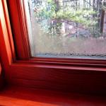 Почему потеют деревянные окна в доме, и что делать с конденсатом?